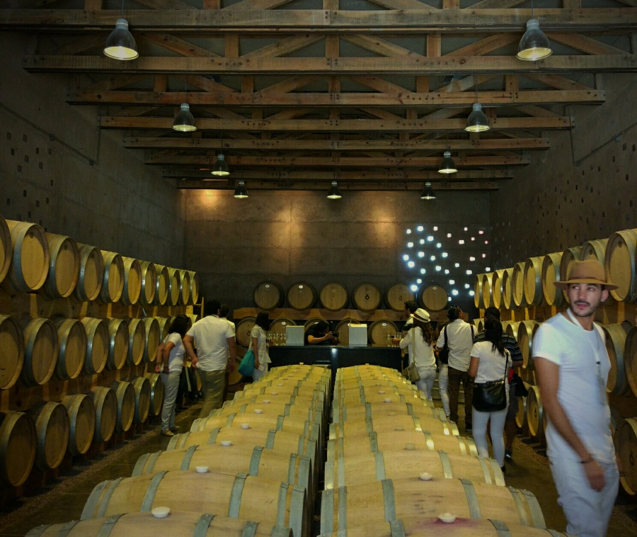 Born to be wine, 'el' festival de vino en el que hay que estar